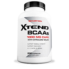 SCIVATION – XTEND BCAA